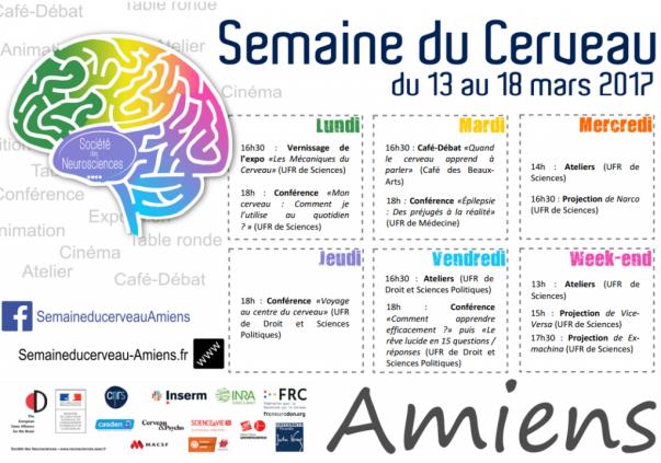 programme semaine du cerveau
