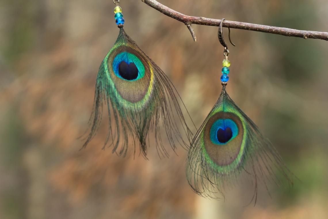 Boucles d'oreilles en plume de paon